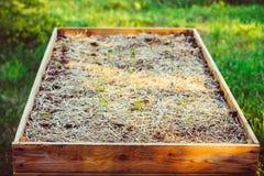 Ogród, flancowanie, ogrodowa łóżkowa wysokość Zdjęcie Stock