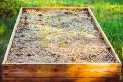 Ogród, flancowanie, ogrodowa łóżkowa wysokość Zdjęcia Royalty Free