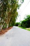 Ogród i droga w parku Fotografia Royalty Free