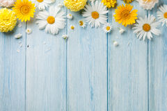Ogród kwitnie nad drewnem zdjęcia royalty free