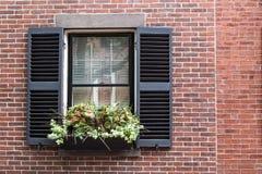 Ogród Na okno Fotografia Royalty Free