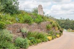 Ogród na wina gospodarstwie rolnym blisko Stellenbosch Fotografia Royalty Free
