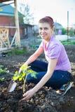 Ogród pracy ogrodowej kobiety pracujący potomstwa Fotografia Royalty Free