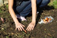 Ogród pracy ogrodowej kobiety pracujący potomstwa Zdrowy Lifesty Obraz Royalty Free