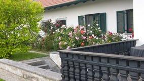 Ogród różany fotografia stock