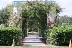 Ogród różany Obraz Stock