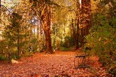 Ogród w parku narodowym Peneda Geres zdjęcia royalty free