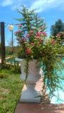 Ogród w szmaragdzie Zdjęcia Royalty Free