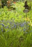 Ogród w wiośnie Zdjęcie Stock