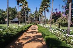 Ogród w wytwórnii win Chile Zdjęcie Royalty Free