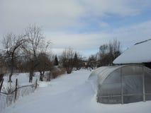 Ogród w zimy szklarni Obraz Royalty Free