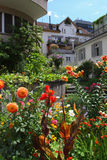 Ogród w Zurich Obraz Stock