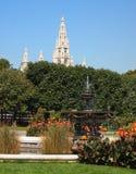 ogród wzrastał Zdjęcie Royalty Free
