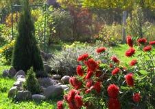 Ogród z czerwieni drzewem i kwiatami Obrazy Royalty Free