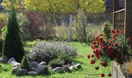 Ogród z czerwieni drzewem i kwiatami Zdjęcia Stock