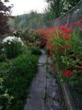Ogród z kwiatami Obrazy Stock