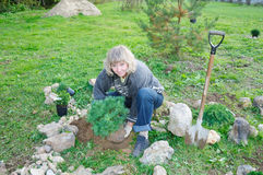 ogród zasadza drzewo kobiety obrazy royalty free