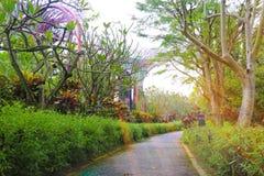 Ogród Zatoką zdjęcia royalty free