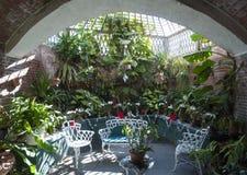 Ogródu Botanicznego wnętrze fotografia stock