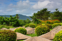 Ogródu piękny krajobraz Obrazy Royalty Free
