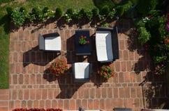 Ogródu set z kwiatami i roślinami Obrazy Royalty Free