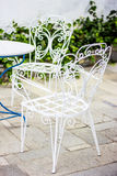 Ogródu ustalony biel Fotografia Royalty Free