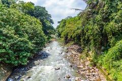 Ogródy botaniczni Bogor, Zachodni Jawa, Indonezja Zdjęcia Stock