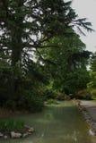 Ogródy botaniczni Christchurch Obraz Stock