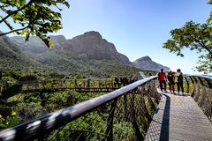 Ogródy Botaniczni Kapsztad Południowa Afryka 1 2017 Październik fotografia royalty free