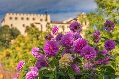 Ogródy botaniczni Trauttmansdorff kasztel, Merano, Włochy Zdjęcie Stock