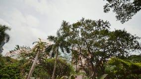 Ogródy i drapacze chmur widzieć przy Ayala trójboka parkiem w Makati, metro Manila zbiory wideo