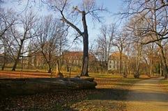 Ogródy lato pałac w Berlin Fotografia Stock