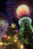 Ogródy podpalanym światłem Zdjęcie Stock