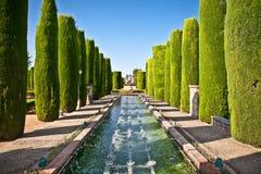 Ogródy przy Alcazar De Los Reyes Cristianos w cordobie, Hiszpania Zdjęcia Stock