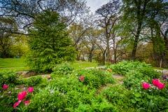 Ogródy przy wysokość parkiem w Toronto, Ontario obrazy royalty free