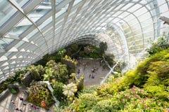 Ogródy Trzymać na dystans Obłoczna Lasowa kopuła w Singapur Zdjęcia Stock