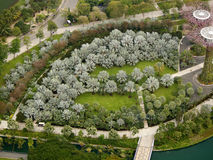 Ogródy Trzymać na dystans parkowi drzewa Obraz Stock