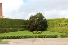 Ogródy Watykan, watykan, Włochy zdjęcia stock