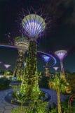 Ogródy Zatoką w Singapur Zdjęcia Royalty Free