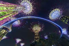 Ogródy zatoką, Singapur Obraz Royalty Free