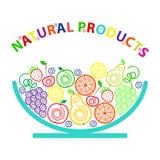 Ogranic fresh fruits Stock Photography
