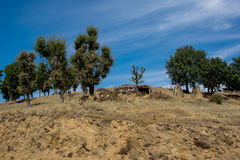 Ograzhden山绿色风景惊人的看法  库存照片