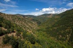Ograzhden山绿色风景惊人的看法  免版税库存图片