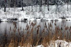 Ogre river in winter. Banks of Ogre river in winter in city of Ogre, Latvija Royalty Free Stock Photo