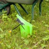 ogrodnictw narzędzia Świntuch, podlewanie puszka i wheelbarrow, Obrazy Stock