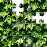 Ogrodnictwa pojęcie Zdjęcie Stock