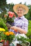 ogrodnictwa seniora kobieta Zdjęcie Royalty Free