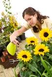 ogrodnictwa tryskaczowa słonecznika wody kobieta zdjęcia stock