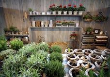 ogrodnictwo dom Zdjęcie Royalty Free