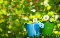 ogrodnictwo ogrodnicze narzędzia wiosny Fotografia Royalty Free